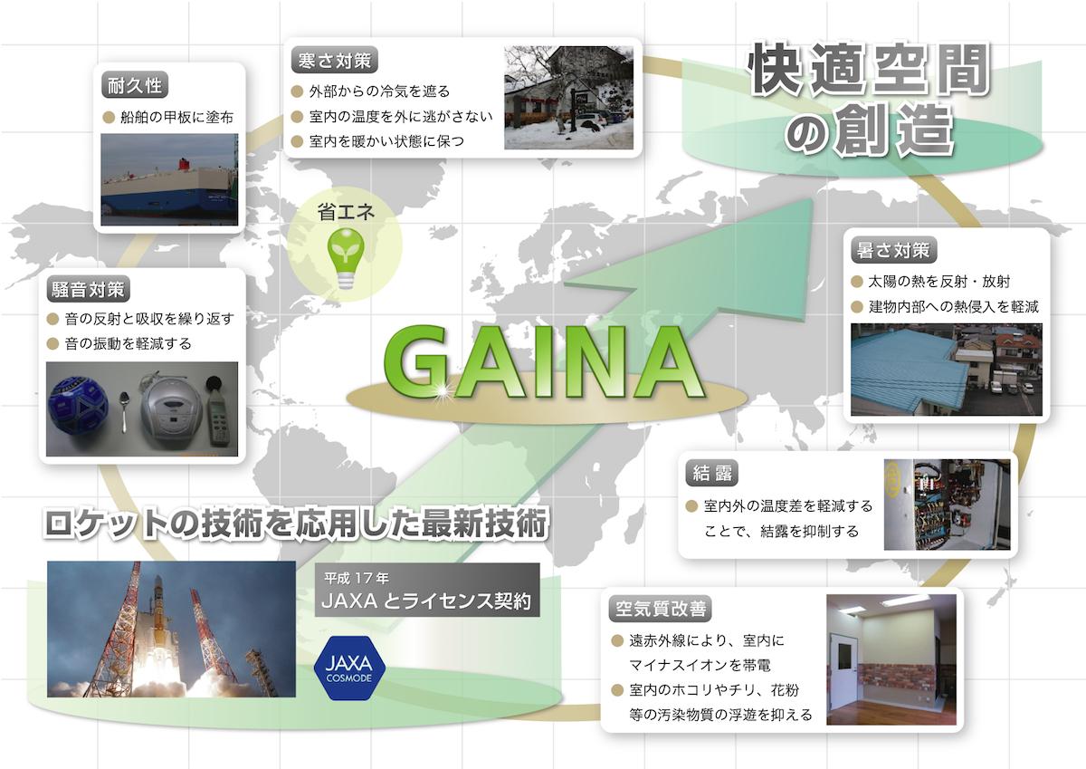gaina_1.png