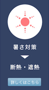 gaina_4.jpg