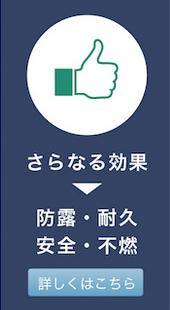 gaina_7.jpg